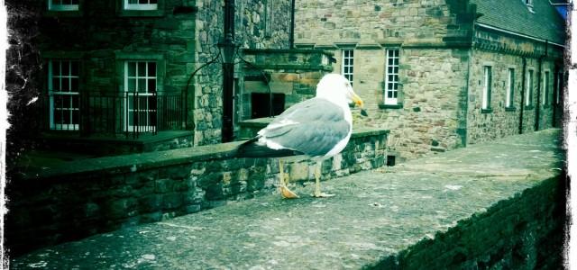 Due giorni a Edimburgo tra lana e castelli